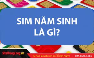 SIM-NAM-SINH