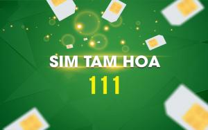 sim-tam-hoa-1